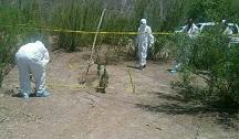 Localizan fosas clandestinas con al menos ocho cadáveres en Tarímbaro